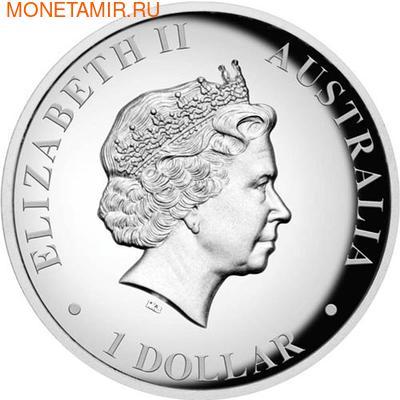 "Австралия 1 доллар 2011.""Кенгуру"". (фото, вид 1)"