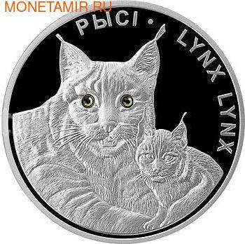 """Набор монет """"Рысь"""". Арт: 111500019920 (фото, вид 2)"""