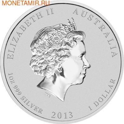 Австралия 1 доллар 2013. Год Змеи (фото, вид 2)