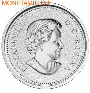 Канада 50 долларов 2013 Бобры.Арт.003143142054/60 (фото, вид 1)