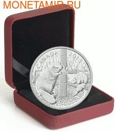 Канада 50 долларов 2013 Бобры.Арт.003143142054/60 (фото, вид 2)