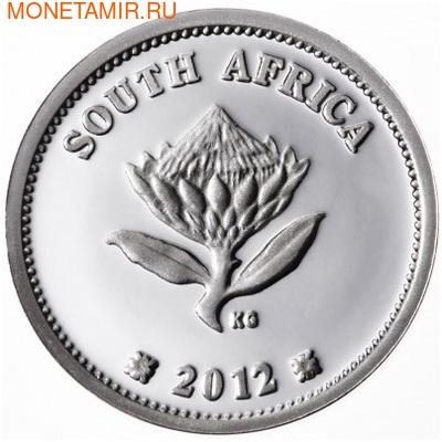 Южная Африка 2 ранда + 2,5 цента 2012 Железная дорога Гаутрайн – Поезда Южной Африки Набор из двух монет (Silver Proof Combo Set R2 and 2,5c 2012 South Africa Trains of South Africa Gautrain).Арт.000329939124/000079639126/60 (фото, вид 5)