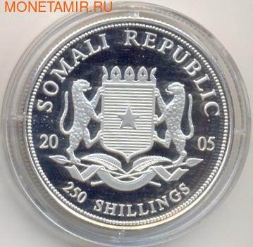 Сомали 250 шиллингов 2005.Князь Монако Ренье-III (Rainer-III von Monaco).Арт.177287/60 (фото, вид 1)