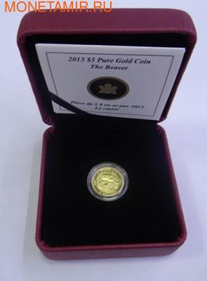 Канада 5 долларов 2013. Бобр (фото, вид 2)