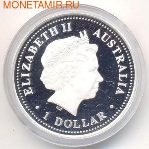 Австралийские Антарктические территории: Альбатрос. Австралия 1 доллар 2006. (фото, вид 1)
