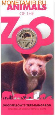 Серия «Животные зоопарка. Древесные кенгуру Гудфеллоу » (фото, вид 2)