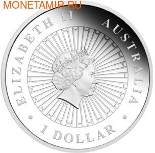 Австралия 1 доллар 2013.Кенгуру - Опал.Арт.000355142417 (фото, вид 1)