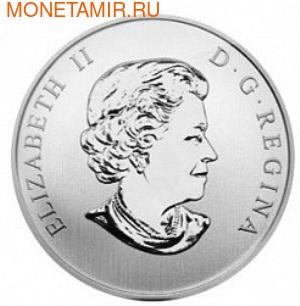Канада 25 центов 2013. Утка-Кряква (фото, вид 1)