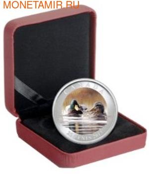 Канада 25 центов 2013. Утка-Кряква (фото, вид 2)