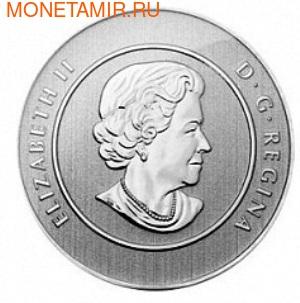 Канада 20 долларов 2013. Волк (фото, вид 1)