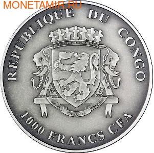 Конго 1000 франков 2012.Детеныши льва (львята).Арт.000357842422/60 (фото, вид 1)