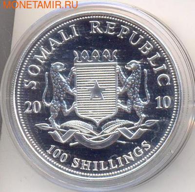 Слон. Сомали 100 шиллингов 2010. (фото, вид 1)