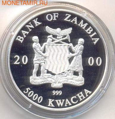 Слон. Замбия 5000 квачей 2000. (фото, вид 1)