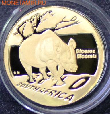 Южная Африка 10+20 рандов 2010 Черный Носорог (South Africa 10R+20R 2010 Natura Black Rhino Gold Proof 2 Coin Set).Арт.K1,5/60 (фото, вид 4)