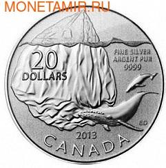 Канада 20 долларов 2013. Кит (фото, вид 1)