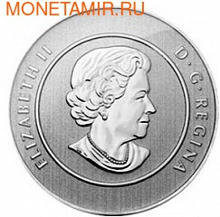Канада 20 долларов 2013. Кит (фото, вид 2)