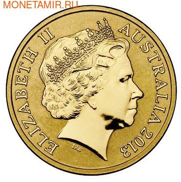 Австралия 1 доллар 2013. Атлантический пуффин (фото, вид 2)