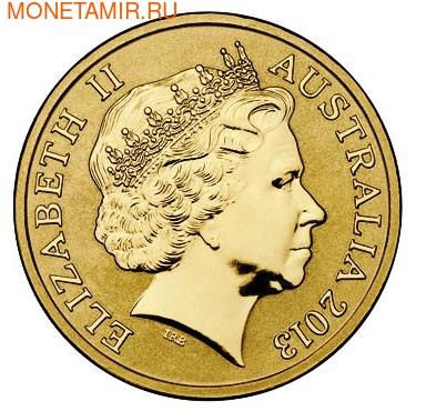 Австралия 1 доллар 2013. Тюлень Уэдделла (фото, вид 2)