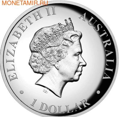 Австралия 1 доллар 2013. Кенгуру (фото, вид 2)