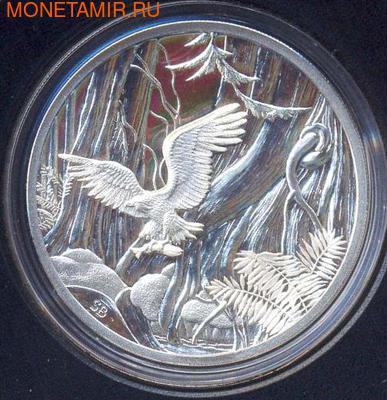 """Канада 20 долларов 2005. Коллекция """"Национальные парки"""" Орел (фото, вид 1)"""