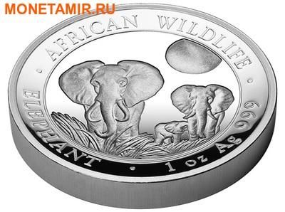 Сомали 100 шиллингов 2014.«Слоны» из серии «Дикая Африка»(High Relief).Арт.000220245605 (фото, вид 2)