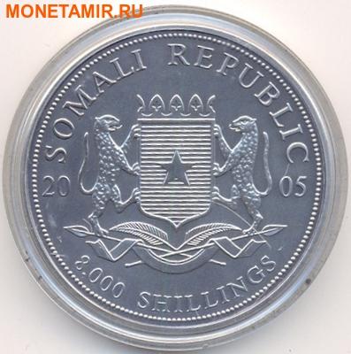Набор из двух монет Сомали 2х8000 шиллингов 2005. Путь в Каабу в Мекке. Компас.Арт.000287013628 (фото, вид 3)