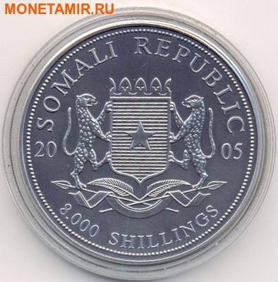Набор из двух монет Сомали 2х8000 шиллингов 2005. Путь в Каабу в Мекке. Компас.Арт.000287013628 (фото, вид 4)