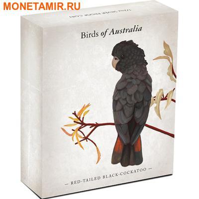 Австралия 50 центов 2013. «Краснохвостый черный какаду» – серия «Птицы Австралии».Арт.000176842018 (фото, вид 3)