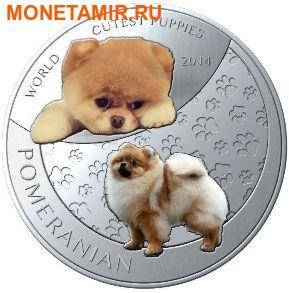 Ниуэ 1 доллар 2014. Набор 5 монет. Мир симпатичных щенков – Шиба-Ину, Тигр, Померанский шпиц, Красная панда, Коала. Арт.000247747799 (фото, вид 3)