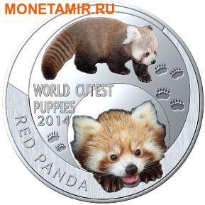 Ниуэ 1 доллар 2014. Набор 5 монет. Мир симпатичных щенков – Шиба-Ину, Тигр, Померанский шпиц, Красная панда, Коала. Арт.000247747799 (фото, вид 4)