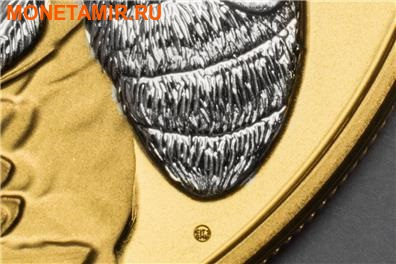 Острова Кука 5 долларов 2014.Пчела.Арт.000253248421/60 (фото, вид 3)