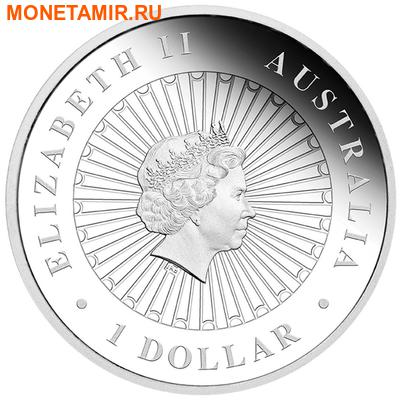 Австралия 1 доллар 2015.Змея – Опал.Арт.000100050283/60 (фото, вид 1)