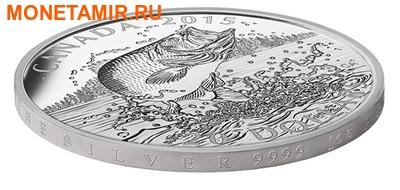 Канада 20 долларов 2015.Североамериканская спортивная рыбалка - Большеротый окунь. (фото, вид 2)