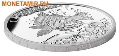 Канада 20 долларов 2015.Североамериканская спортивная рыбалка - Судак. (фото, вид 1)