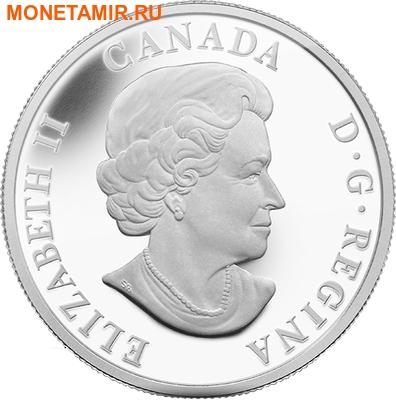 Канада 20 долларов 2014.Белый Медведь.Арт.000312945944/60 (фото, вид 1)