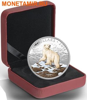 Канада 20 долларов 2014.Белый Медведь.Арт.000312945944/60 (фото, вид 2)
