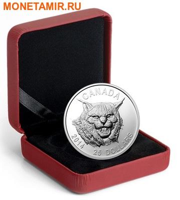 Канада 25 долларов 2014.Рысь (ультра-высокий рельеф). (фото, вид 2)