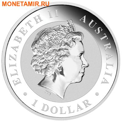 Австралия 1 доллар 2015.Австралийский коала.Арт.000318250263/60 (фото, вид 1)