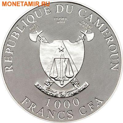 Камерун 1000 франков 2010.Туринская Плащаница (голограмма).Арт.000157032975/60 (фото, вид 1)
