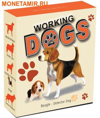 Тувалу 1 доллар 2011.Бигль серия Служебные собаки.Арт.000360434830/60 (фото, вид 3)