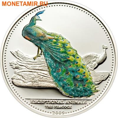 Палау 2х5 долларов 2009.Райская птица и павлин.Арт.60 (фото, вид 3)