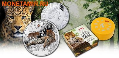 Ниуэ 1 доллар 2014.Амурский Леопард – Вымирающие виды животных.Арт.000465249785/60 (фото, вид 4)