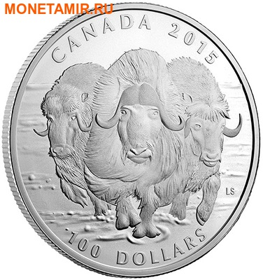 Канада 100 долларов 2015.Овцебык.Арт.60 (фото, вид 1)
