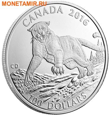 Канада 100 долларов 2016.Пума.Арт.60 (фото, вид 1)