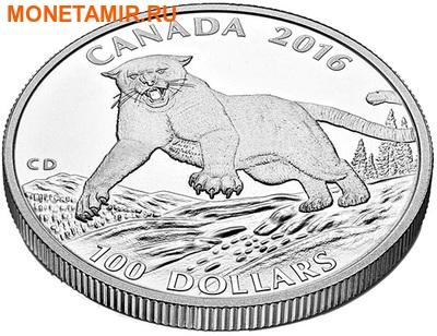 Канада 100 долларов 2016.Пума.Арт.60 (фото, вид 2)