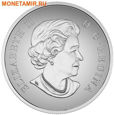 Канада 100 долларов 2016.Пума.Арт.60 (фото, вид 3)