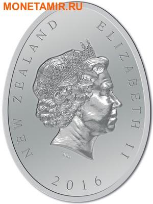 Новая Зеландия 1 доллар 2016.Киви (блистер).Арт.60 (фото, вид 1)