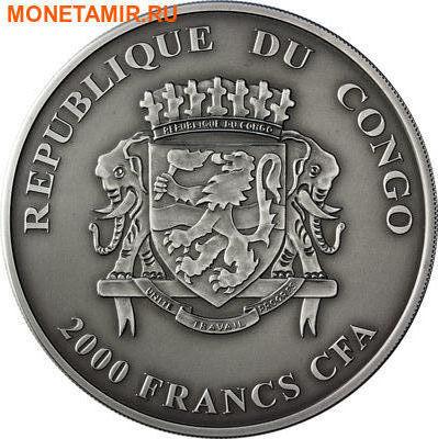 Конго 2000 франков 2013.Детеныши льва (львята).Арт.000567547461/60 (фото, вид 1)