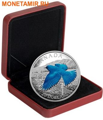Канада 20 долларов 2016.Голубая горная Сиалия (Sialia currucoides) серия Перелетные птицы.Арт.60 (фото, вид 2)