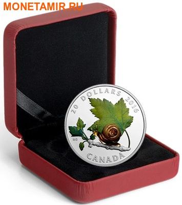 Канада 20 долларов 2016.Улитка – Муранское стекло.Арт.60 (фото, вид 3)